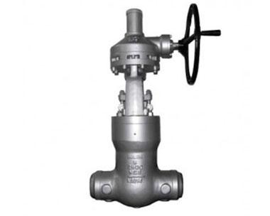 Power station valve