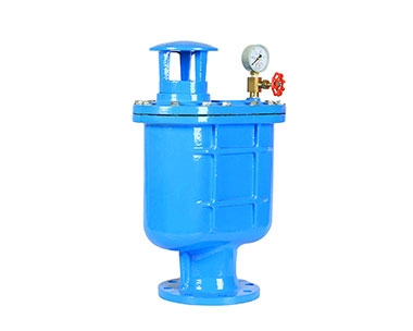 CARX compound exhaust valve (air valve)