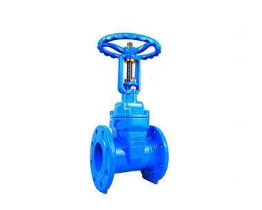Z41X, RRHX soft-sealed rising stem elastic seated gate valve